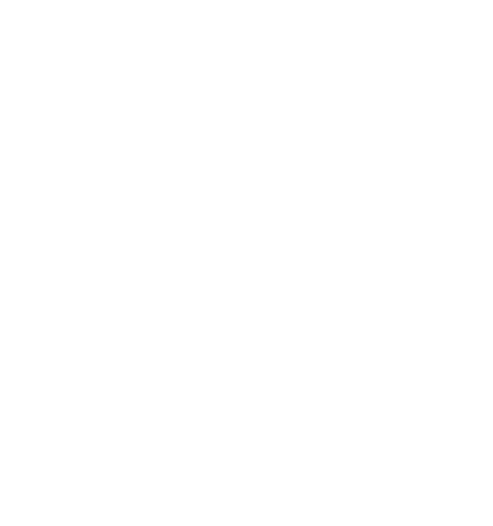20Years PAS Logo White